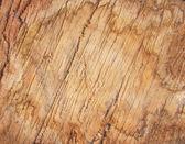 Scruffy Grunge Wood Texture — Stock Photo