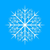 Ornamental Snowflake Design — Stockvektor
