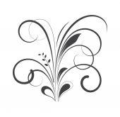 Floral Vector — Stock Vector