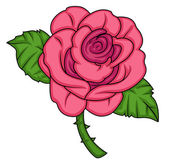 Pink Rose Vector — Stock vektor