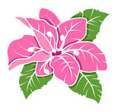 Pink Flower Vector Illustration — Vecteur