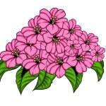 Beautiful Decorative Pink Flowers Bunch Vector — Stock Vector #64344143