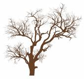 Dry Tree Vector Illustration — Vecteur