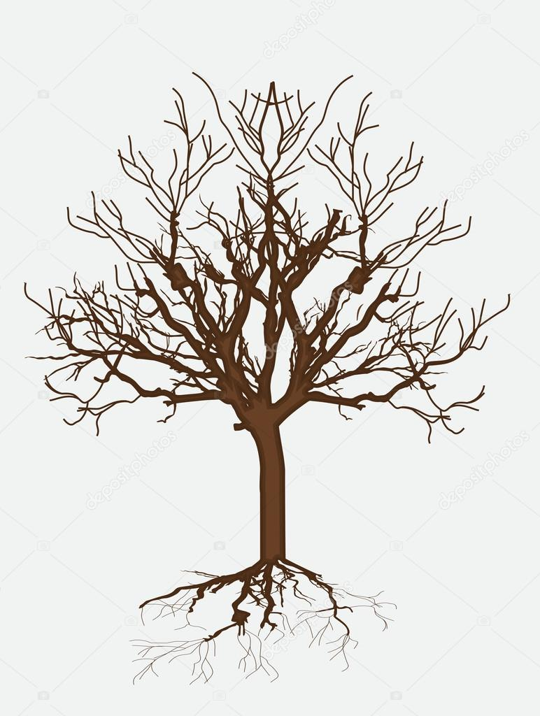 Дерево голое