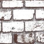 White Painted Grunge Bricks Pattern — Stock Vector #64726203