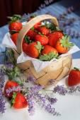 イチゴのバスケット — ストック写真