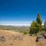 Gran Canaria, inland — Foto de Stock   #51896385