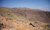 Barranco de Guayadeque Ravine, Gran Canaria — Stock Photo