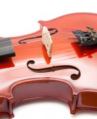 Violin isolated — Stock Photo