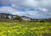 Inland Gran Canaria, view towards Historical town Teror — Stock Photo