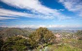 Gran Canaria, February — Stock Photo