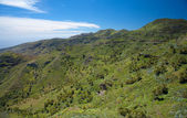 Inland La Gomera — Stock Photo