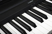 Fragment of a number of electronic piano keyboard YAMAHA — Stock Photo