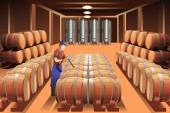 Worker in a winery — Stock Vector