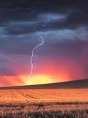 Thunder Struck — Stock Photo