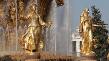 Fountain of Friendship of people, Moscow, Russian Federation — Stock Video