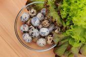 Eco eggs — Stock Photo