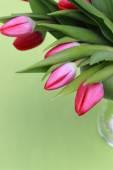 Blumen — Stockfoto