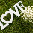 Word LOVE lying on green grass — Stock Photo #55626839
