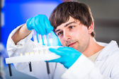 Male researcher carrying out scientific research in a lab — Stock Photo