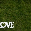 Word LOVE lying in lush, well cut grass — Stock Photo #58259699