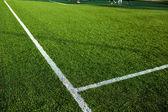 Well cut grass of a soccer field — Stock Photo