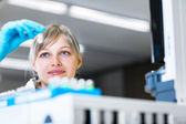 Female researcher carrying out research — Stock Photo