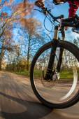 Bicycle riding in a city park — Stock Photo