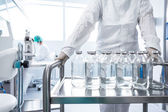Flasks with liquids in a lab — Stock Photo