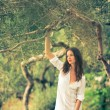 Brunette woman amid olive trees — Stock Photo #69974323