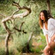 Brunette woman amid olive trees — Stock Photo #69974331