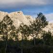 Mont Sainte Victoire in Provence, France — Stock Photo #79678024