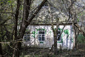 Village in Chernobyl zone — ストック写真