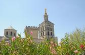 Avignon-katedralen — Stockfoto