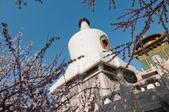 White Dagoba in Beijing — Stockfoto