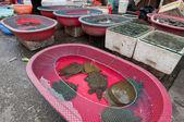 Rynek żywności w Szanghaju — Zdjęcie stockowe