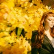 Beautiful woman with red hair in autumn park — Stock Photo #56916183