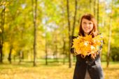 Beautiful woman with red hair in fall park — Stock Photo