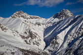 Fir trees in winter time in Alps — Zdjęcie stockowe