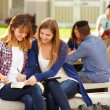 Female Students Working On Campus — Stock Photo #59344221