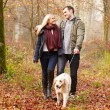 Couple Walking Dog in forest — Stock Photo #59344499