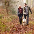 Couple Walking Dog in forest — Stock Photo #59344933