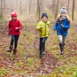 Children Running Through Autumn Forest — Stock Photo #59345091