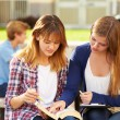 Female Students Working On Campus — Stock Photo #59345293
