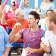 Spectators Cheering At Outdoor Sports Event — Stock Photo #59345543