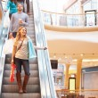 Female Shopper On Escalator In Shopping Mall — Stock Photo #59345849