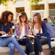 Female Students Working On Campus — Stock Photo #59346033