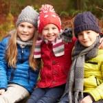Three Children in Winter Forest — Stock Photo #59346801