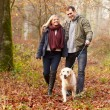 Couple Walking Dog in forest — Stock Photo #59347067
