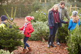 Family Choosing Christmas Tree — Stock Photo